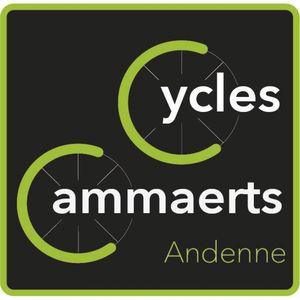 Cammaerts