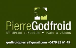 P. Godfroid